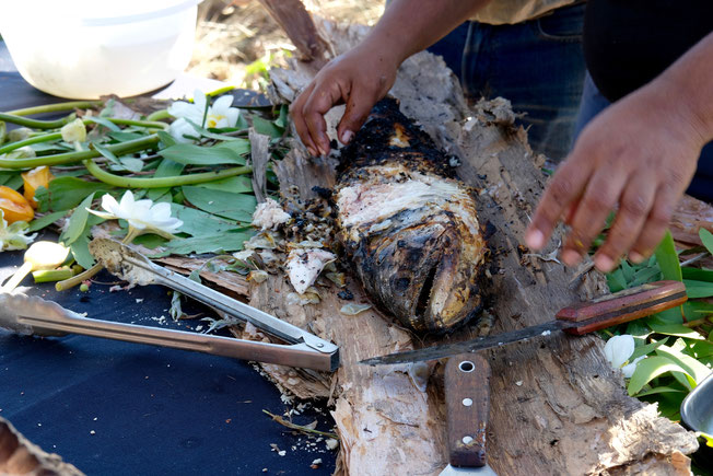 Barramundi, Taste of Kakadu Food Festival, Northern Territory Australien