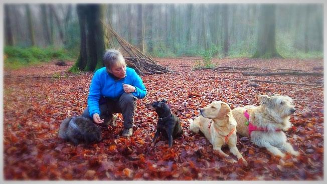 Hundeschule Bonn