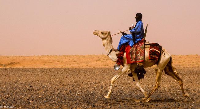 Touareg montando en camello. Norte de Gao. Malí.