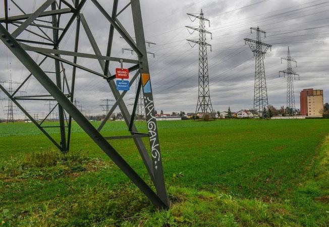 Hochspannung: Der geplante Bau einer Unterkunft für Bedürftige unter Stromtrassen in Ilvesheim sorgt weiter für Aufregung. © Thomas Rittelmann