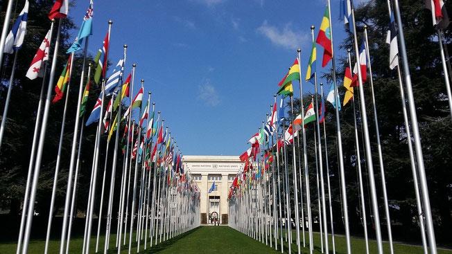 Les 10 rois représentent toutes les nations de la terre qui vont pouvoir régner pendant 1 heure avec la bête, ont le sentiment de jouer un rôle important au niveau mondial en prenant part aux réunions, aux accords, aux décisions au sein de l'organisation.