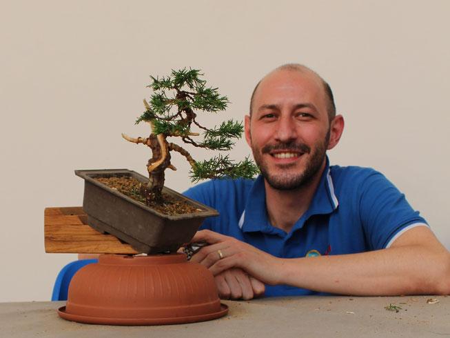 Mauro Trevisani - Bonsai do Groane - Miglior bonsaista del Coordinamento 2016