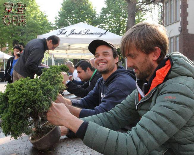 Matteo Massaglia - Bonsai Club Rivalta - Miglior bonsaista del Coordinamento 2017
