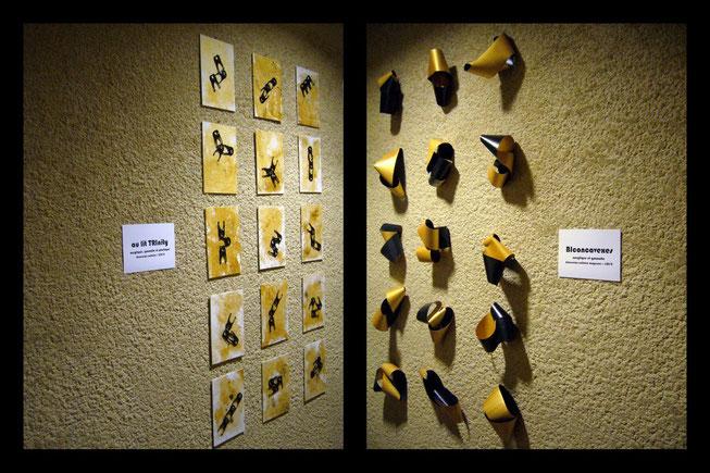 """""""Au lit TRInity"""" & """"BIconcavexes"""" - 2011 - Maison de la Gibauderie de POITIERS (86)"""
