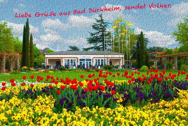 """Victors Parkcafé Traubenkur"" in Bad Dürkheim; Tulpen, Kurpark"