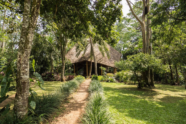 Kibale Forest Camp - Hauptgebäude