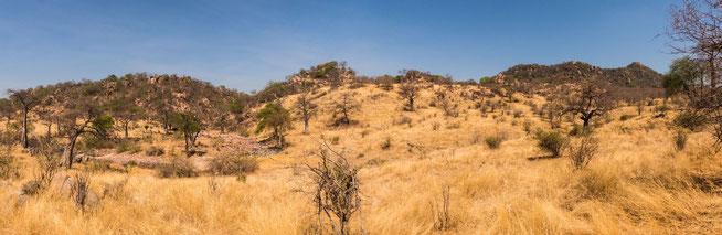 Kimilamatonge Hill