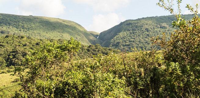 Blick auf den Wasserfall in der Munge Gorge - Olmoti Krater