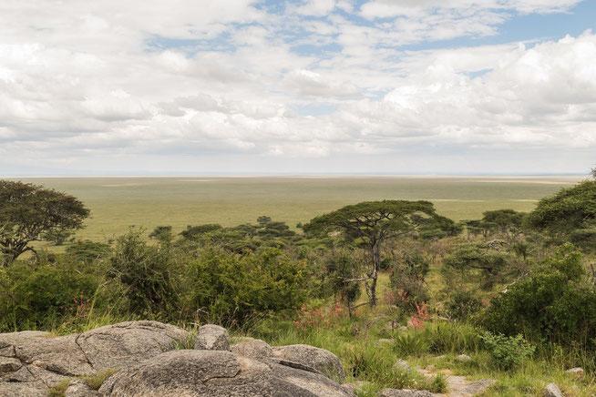 Blick vom Nabi Hill auf die Grasebenen der Serengeti