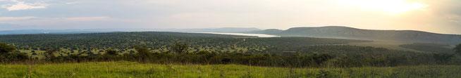 Panoramablick vom Rwamahunga Hill über den Lake Mburo National Park