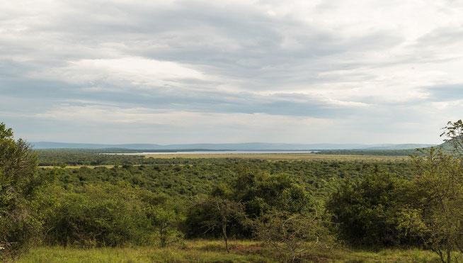 Blick auf den Lake Mburo