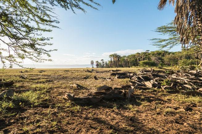 Blick von der Kisima Ngeda Campsite zum Lake Eyasi