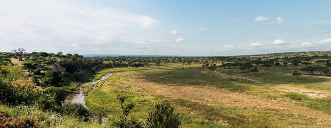 Blick von der Matete Picnic Seite auf den Tarangire River