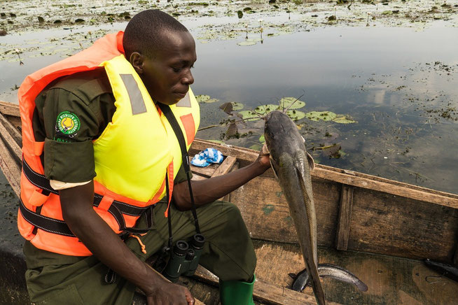 Ranger Alex mit unserem nächsten Fisch