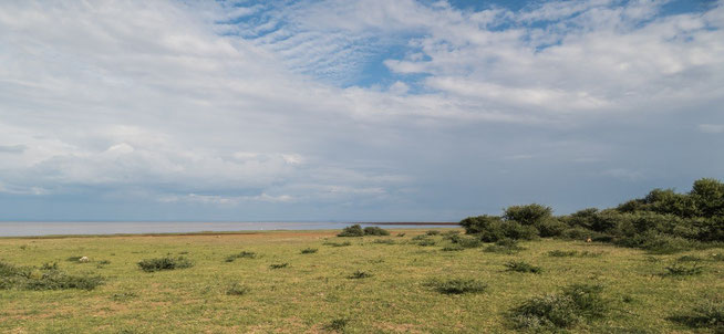Blick von der Endallah Picnic Site auf den Lake Manyara