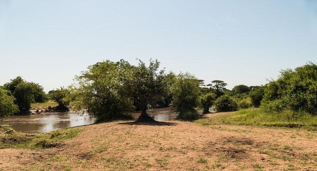 "Blick auf den Grumeti River ""Special Campsite Kirawira 2"""