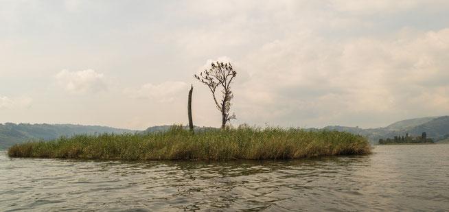 """""""akampene island"""""""