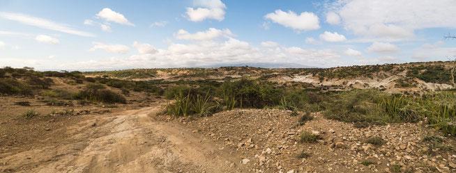 In der Olduvai Gorge
