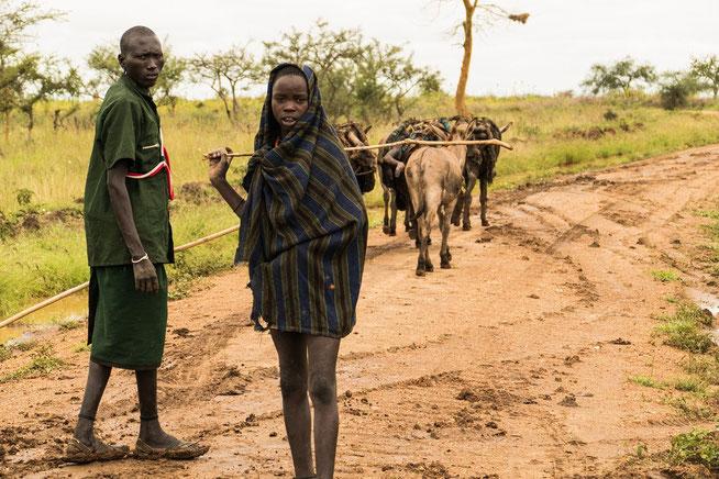 Junge Karamojong beim traditionellen Warentransport mit Eseln