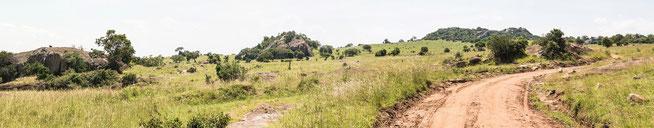 Blick auf die Lobo Hills