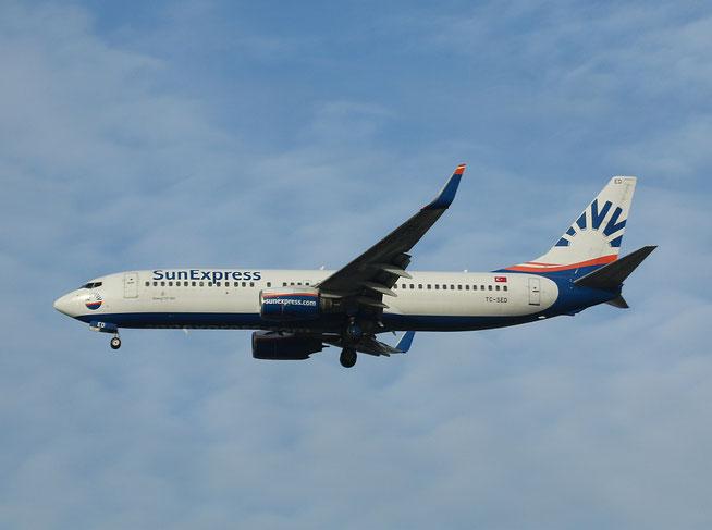 """B 737-8CX/W  """" TC-SED """" SunExpress -1"""