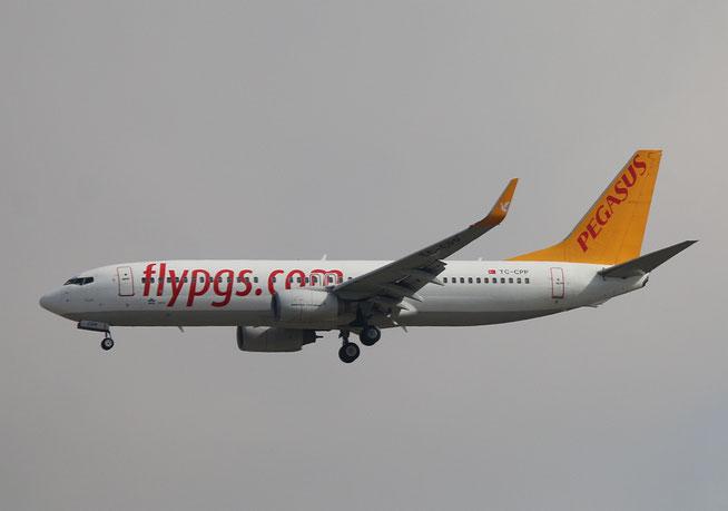 "B 737-804/WL "" TC-CPP "" Pegasus Airline -1"