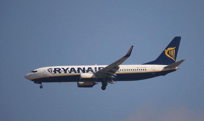 "B 737-8AS (W)  "" EI-EXD ""  Ryanair -1"