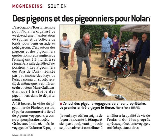 Journée Pigeons pour Nolan - Le progrès