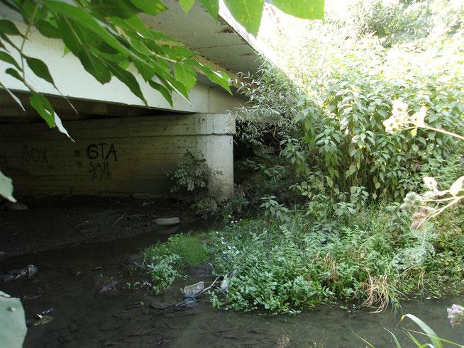 グルシェフカ川にかかる橋。イェレーナ・ザコトノヴァの遺体は 12月24日にこの場所で発見された。