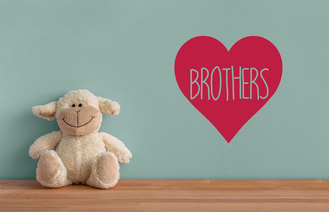 Brothers love heart family vinyl wall art decals. They come in many colours and a mix match of sizes and family names. From wallartcompany.co.uk