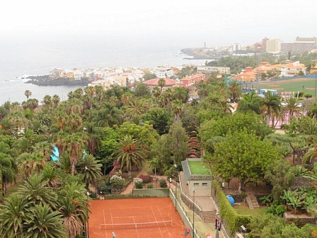 Blick über in Dach aus Palmen und subtropischen Pflanzen bis zum Meer vor dem Playa Jardin in Puerto de la Cruz.