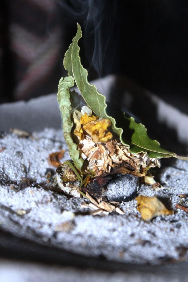 Räuchern mit allerlei Kräutern, Hölzern, Harzen aus Garten, Wiese und Wald