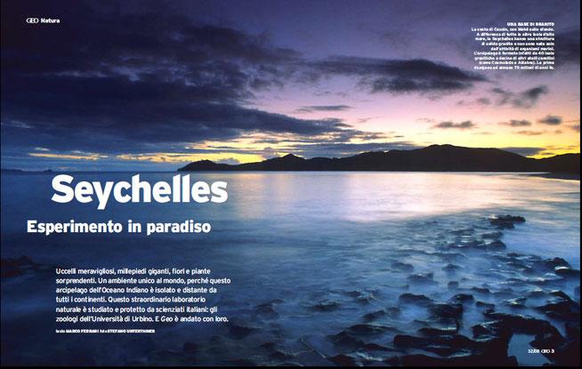 seychelles geco verde