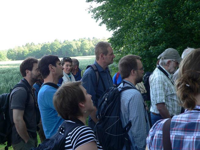 Tagungsteilnehmer bei der Exkursion in der Davert (Foto: Gilberto Pasinelli)