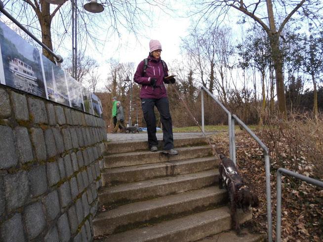 Den mit Wasser gefüllten Becher auf einem Brett sicher an das Ende der Treppe zu bringen, erfordert höchste Konzentration...