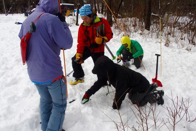 実践的雪崩捜索トレーニング