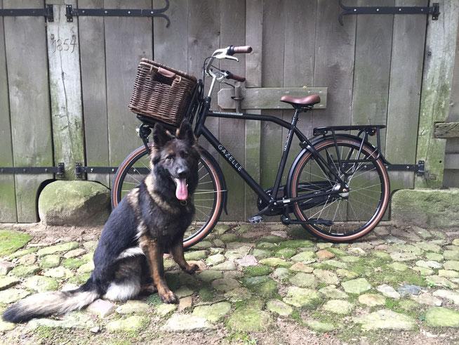 Ixy met de nieuwe fiets in september 2015. De mand is inmiddels verwijderd.
