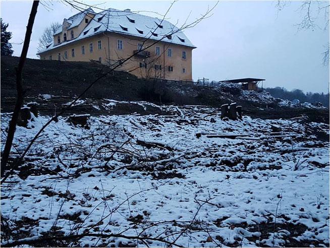 Fotoquelle: Bürgerinitiative Schloss Reinthal