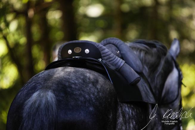 Ein Barocksattel auf einem Pferd. Ansicht von schräg hinten.