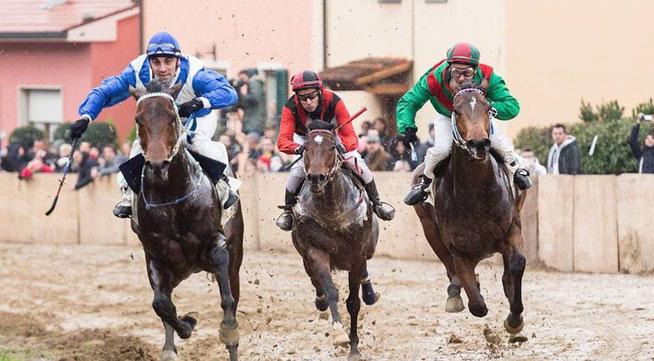 Course de chevaux au palio de Buti