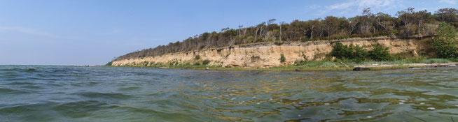Bild: Panoramaaufnahme der Steilküste auf der Insel Poel
