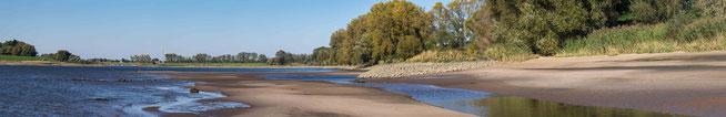 Bild: Am Ufer der Große Werder