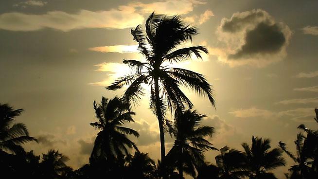Bild: Sonnenuntergang am Nilaveli Beach