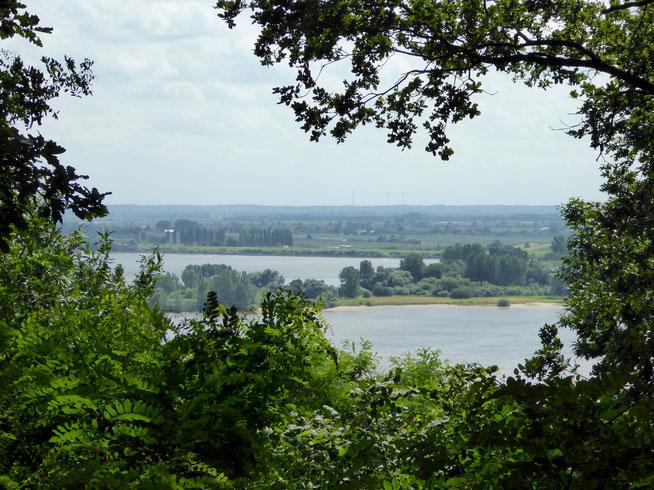 Bild: Ausblick auf die Elbe
