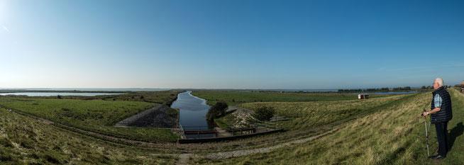 Bild: Panorama Beltringharder Koog