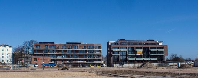 Bild: Harburger Neubauten zur IFA-Harburg
