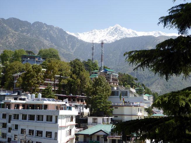 Bild: McLeod Ganj bei Dharamsala in Nord Indien
