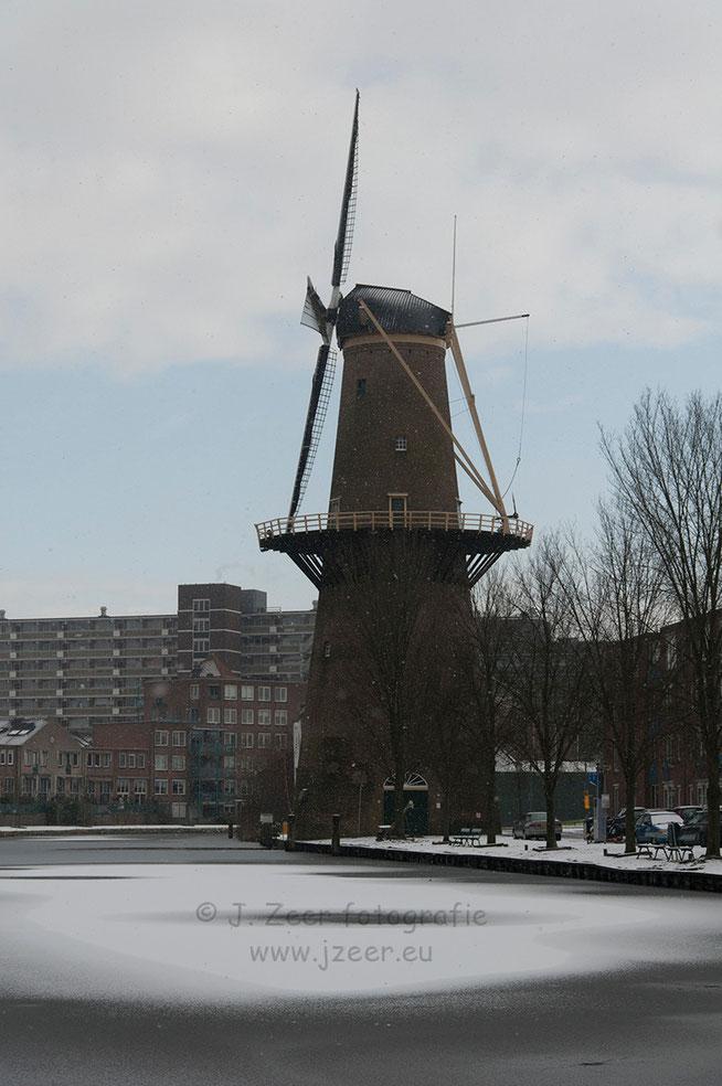 """Afgelopen week viel er een kleine beetje sneeuw. Dat in combinatie met een dun laagje ijs geeft een uniek beeld bij de Schiedamse museum molen """"De nieuwe palmboom."""""""
