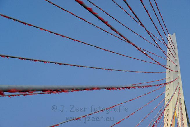 Dit jaar bestaat de Erasmusbrug 20 jaar en viert Rotterdam 75 jaar wederopbouw. Om dat te vieren is de brug gehuld in oranje vlaggetjes die hier mooi afsteken tegen de blauwe lucht en ondergaande zon.