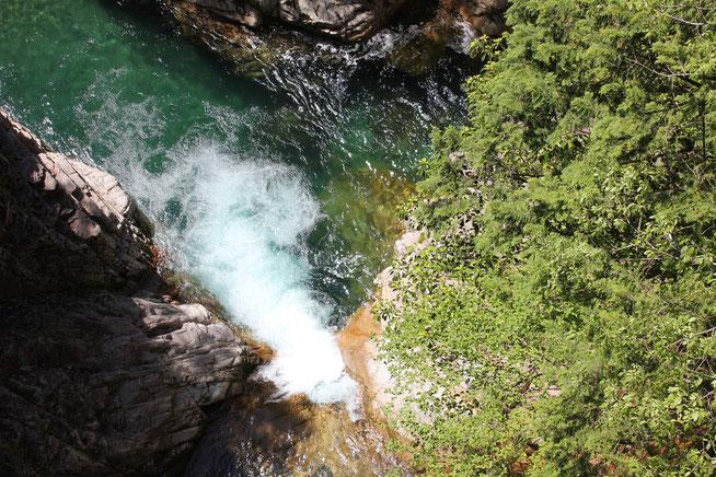 岐阜県 川浦(かおれ)渓谷 5月 山の水が川へ流れる。